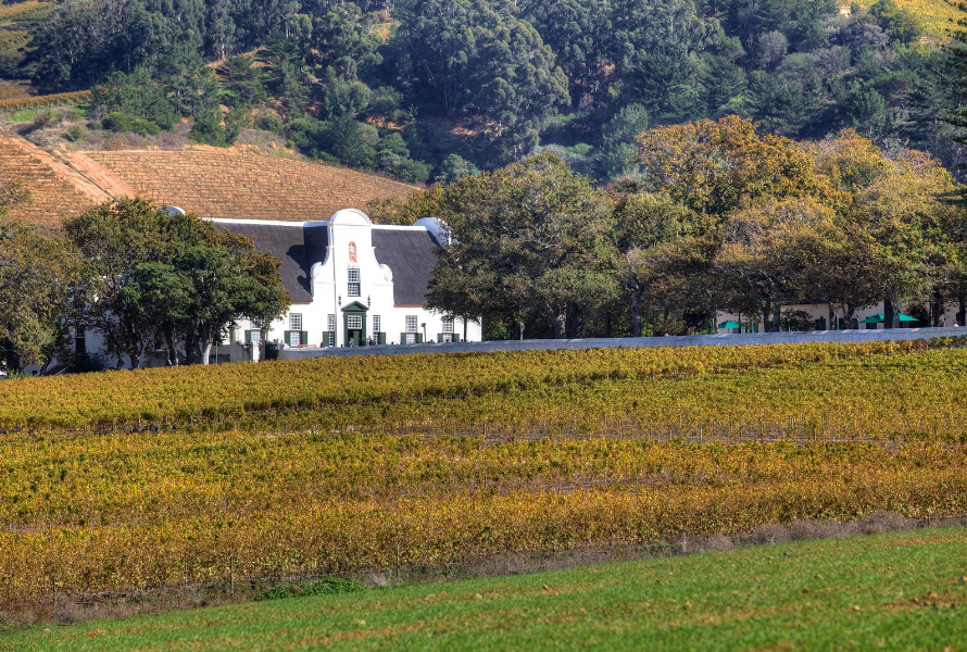 Cape Town has world-class Wine Estates